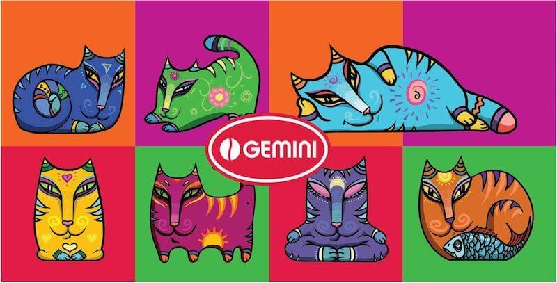 Котики Gemini